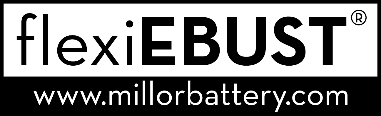 flexiEBUST LOGO